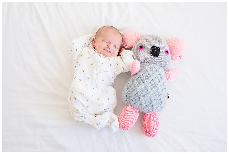 newborn baby with a koala