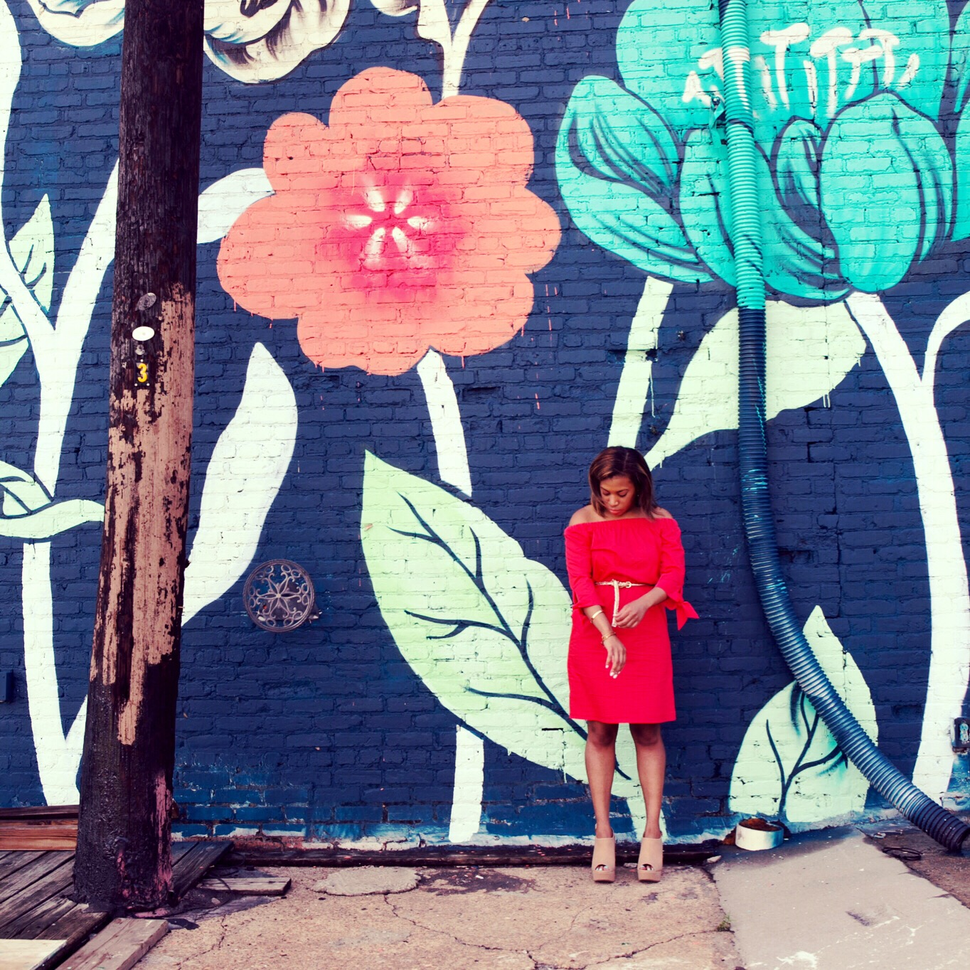 Bloomwhereyouareplanted.JPG