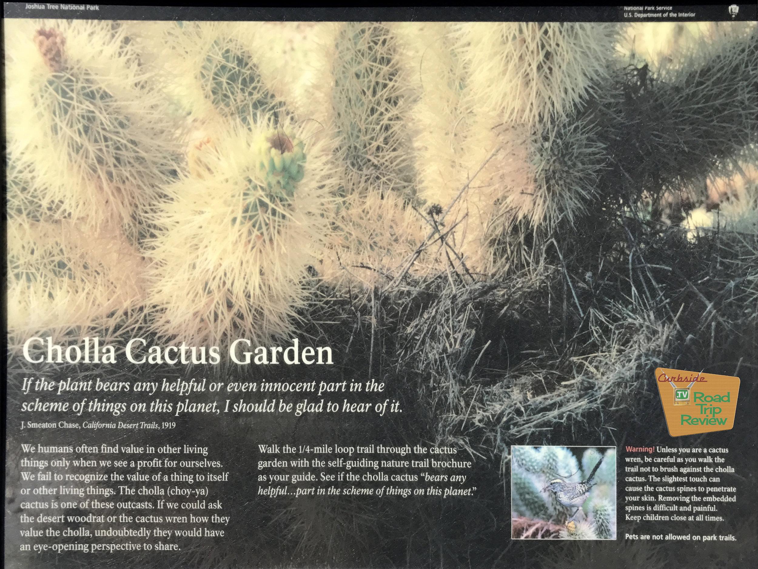 Joshua Tree National Park - 118.jpg