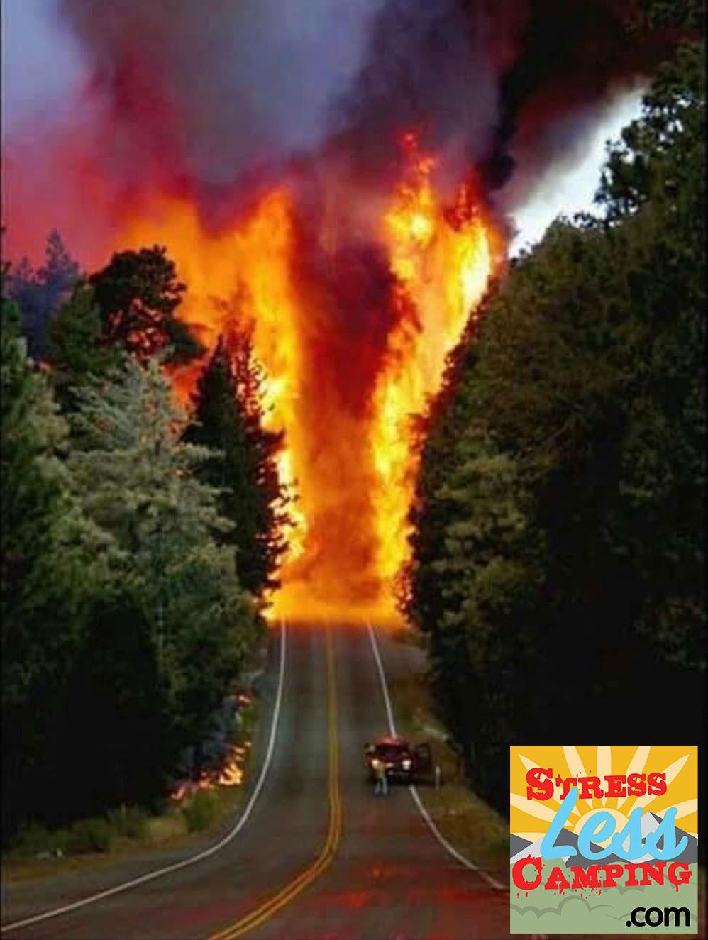 Fire-road.jpg