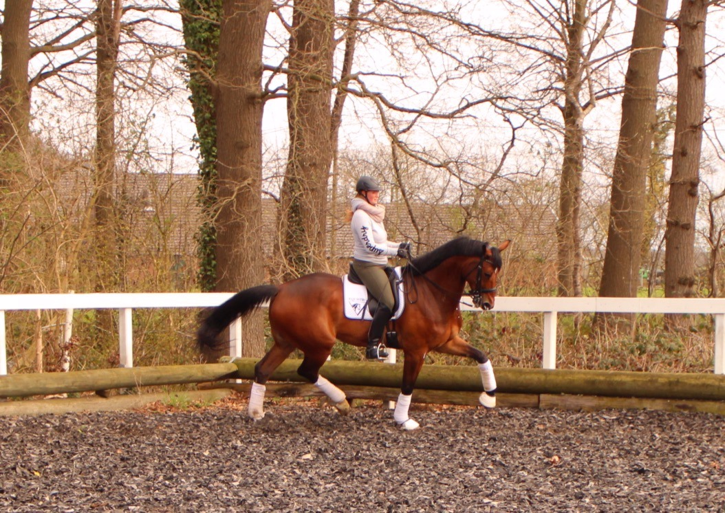Prix st Georges for sale