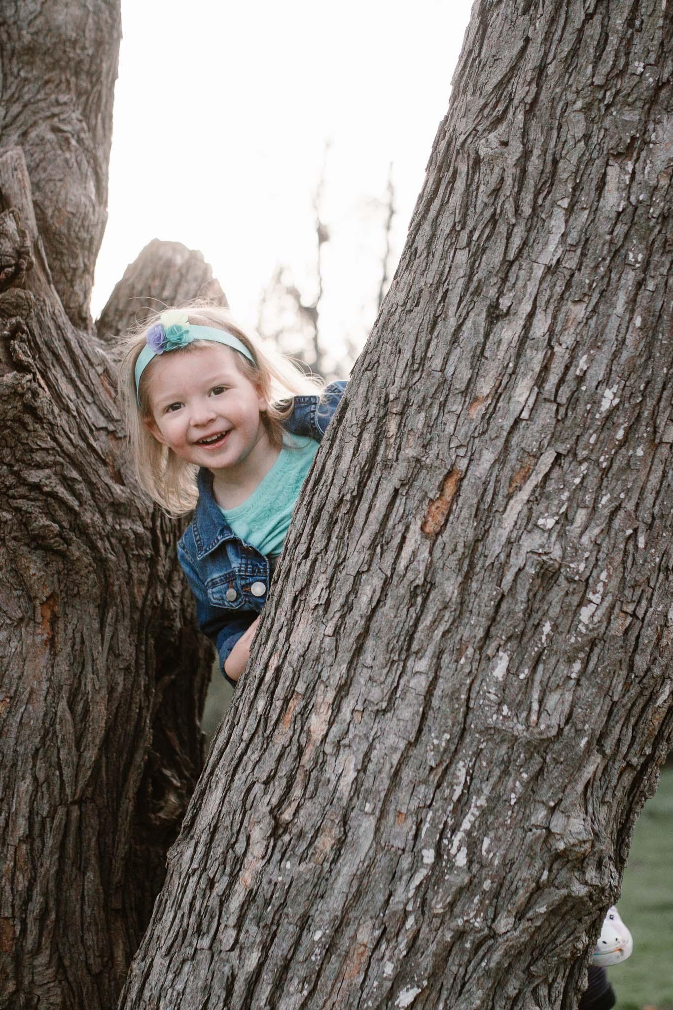 Little girl climbing a tree at Red Rock Overlook in Leesburg, VA