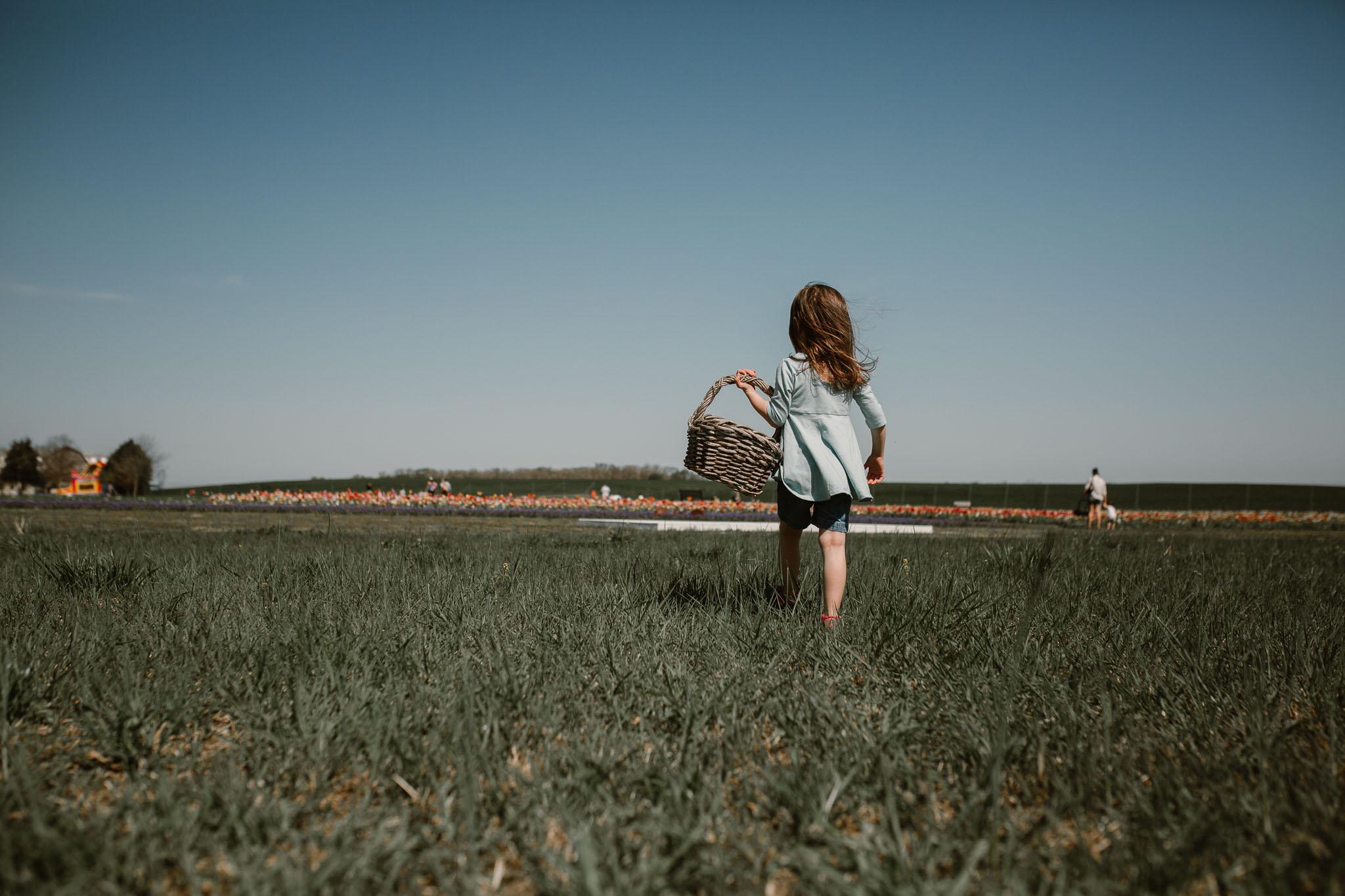 toddler girl picking flowers at burnside farm Haymarket Virginia lifestyle childhood photogrpahy