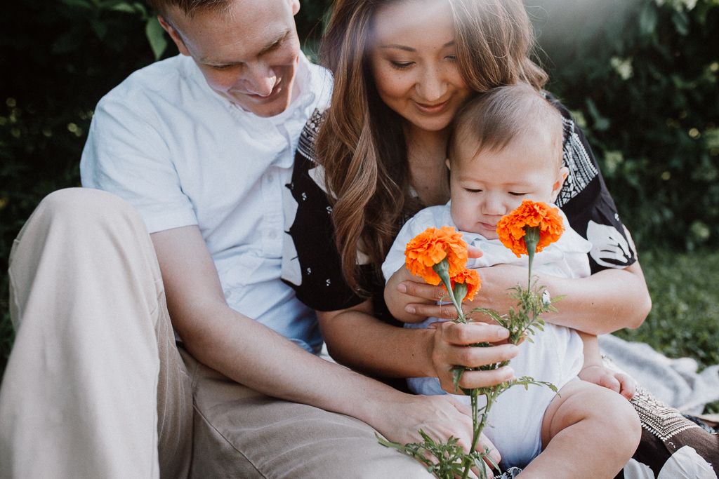 Parents sit with their young son and examine an orange marigold at Fields of Flowers in Purcellville, VA