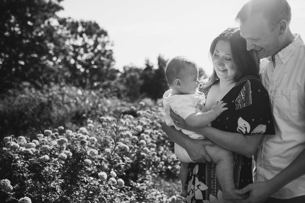 black and white; family of three at Fields of Flowers in Purcellville, VA