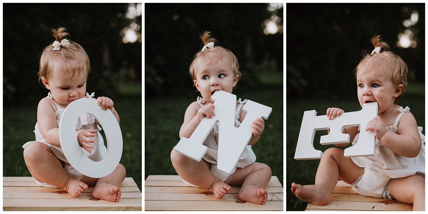 Toddler birthday one year old portrait collage family lifestyle photography Marti Austin Photography Rust Nature Sanctuary Leesburg Loudoun Virginia
