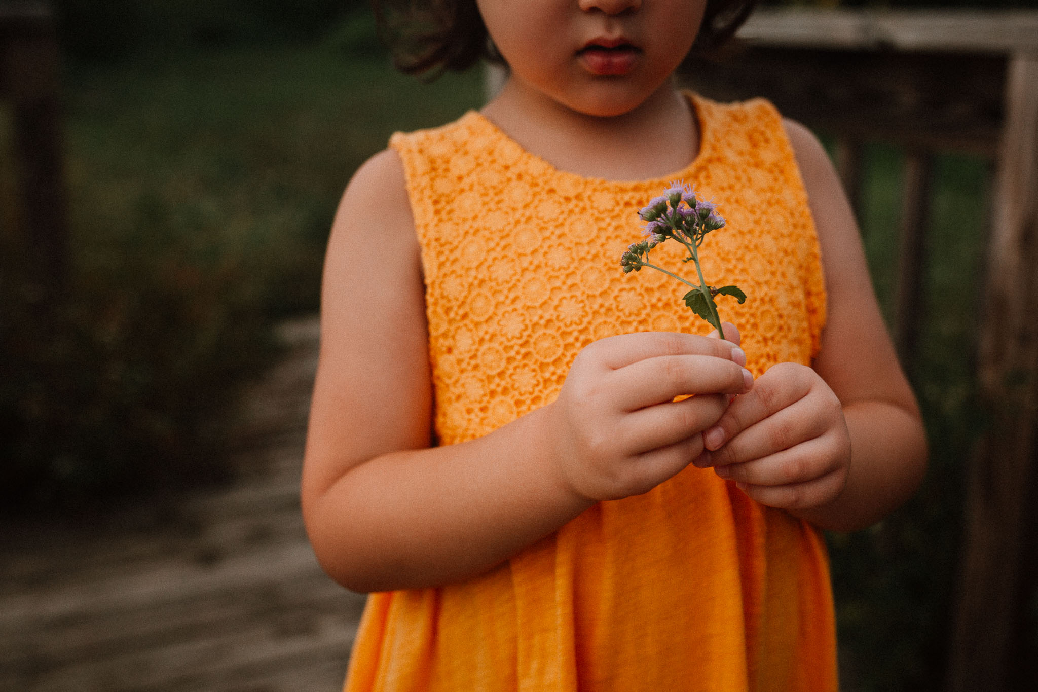 wildflowers girl hands details portrait Claude Moore Park Heritage Farm Museum Sterling Virginia Lifestyle Documentary Fall Family Marti Austin Photography