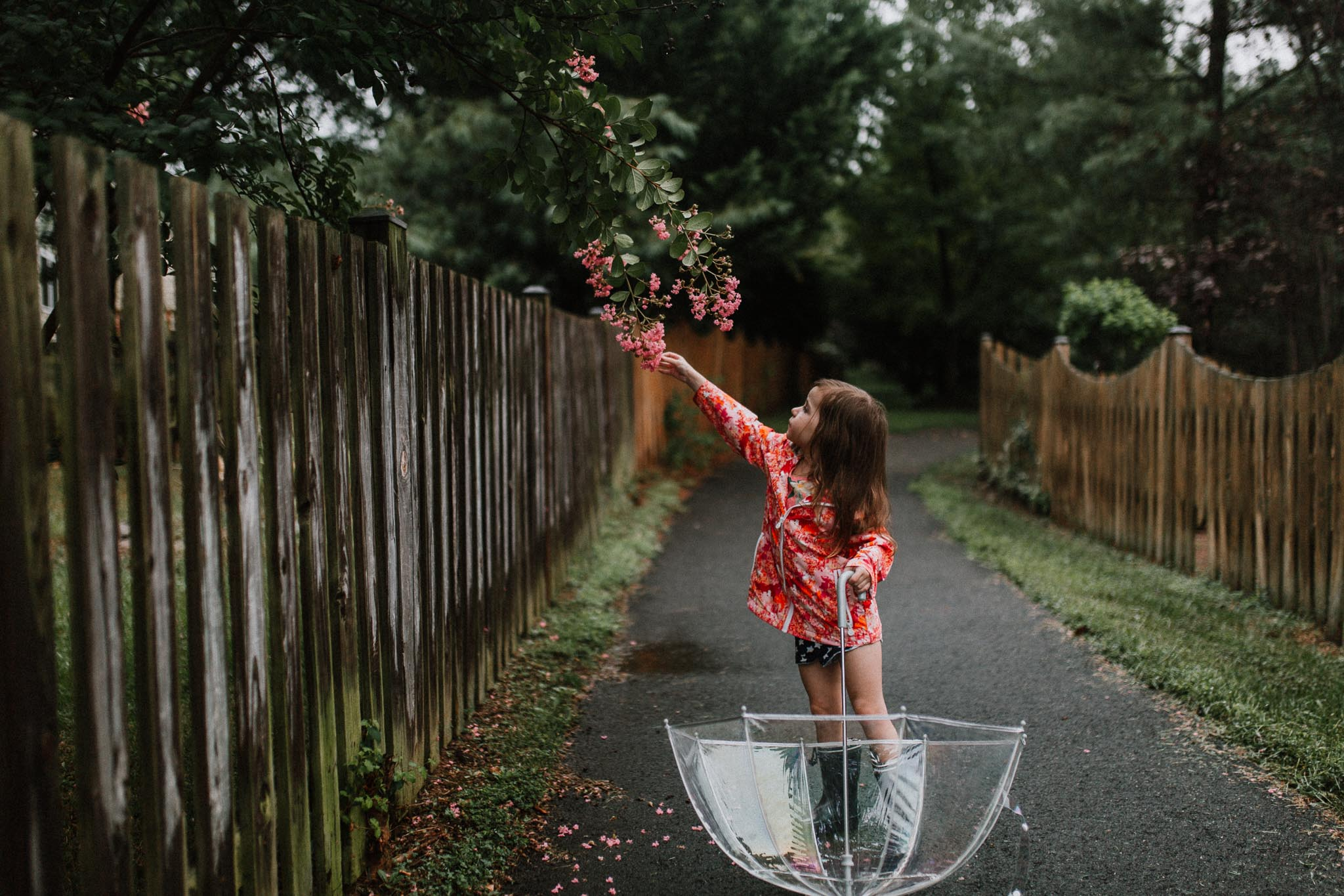 Rainboots umbrella puddle pink flowers Toddler Girl Ashburn Virginia Lifestyle Documentary Family Marti Austin Photography