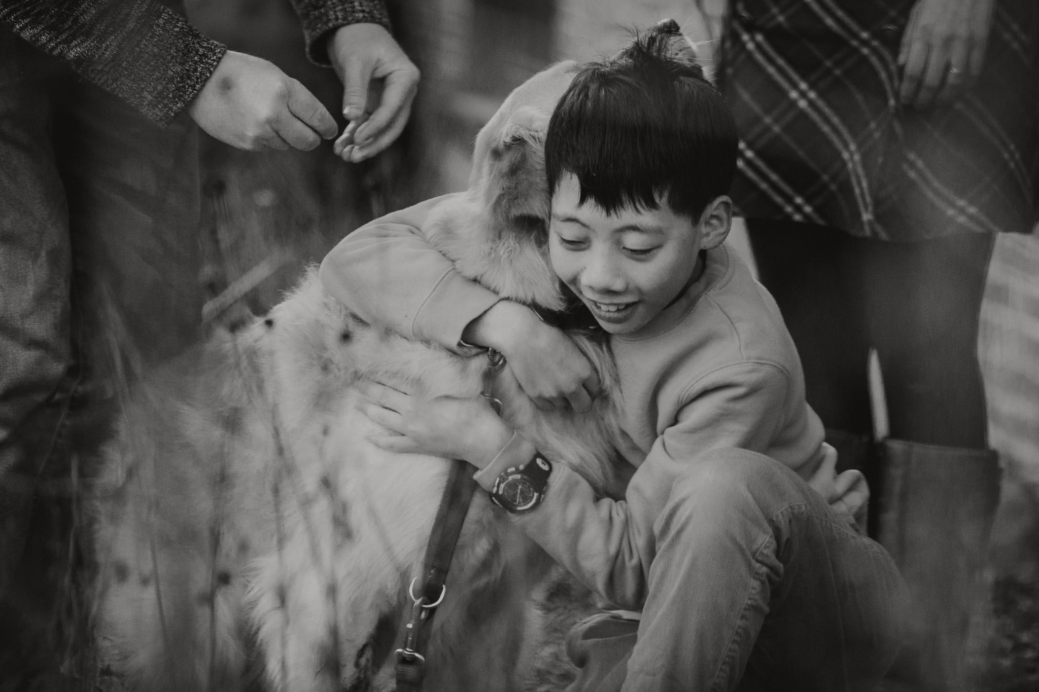 black and white boy dog Lifestyle Documentary Found Families Adoption Outdoor Golden Hour Sunset Colvin Run Mill Great Falls Virginia Marti Austin Photography
