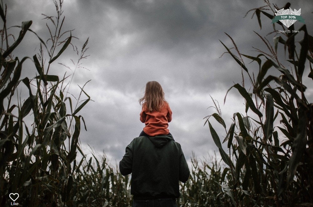 father daughter shoulders corn field lifestyle documentary ashburn loudoun virginia shoot and share contest Marti Austin Photography