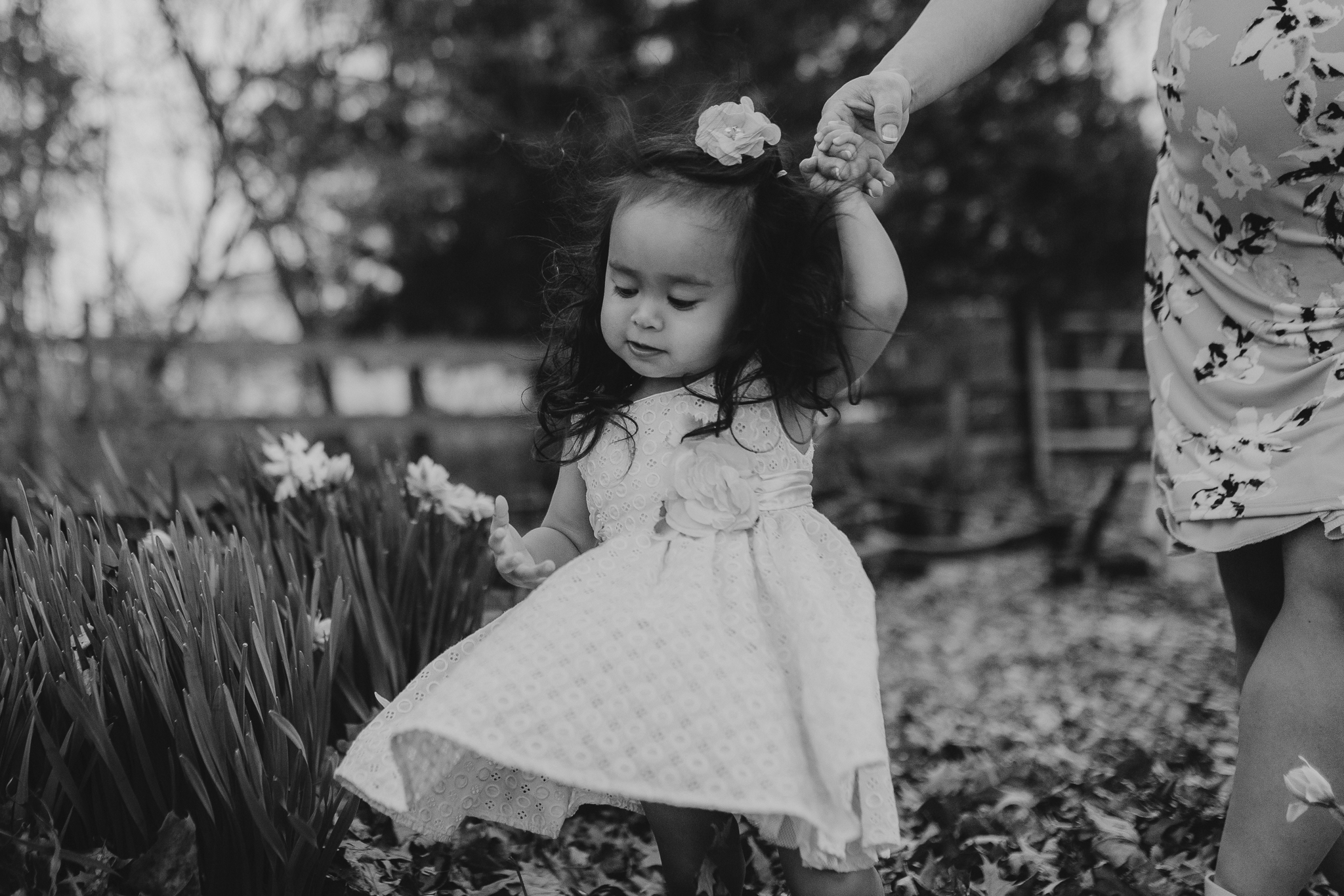 black and white toddler girl flowers maternity lifestyle documentary family Claude Moore Park Heritage Farm Museum Sterling Loudoun Virginia Marti Austin Photography