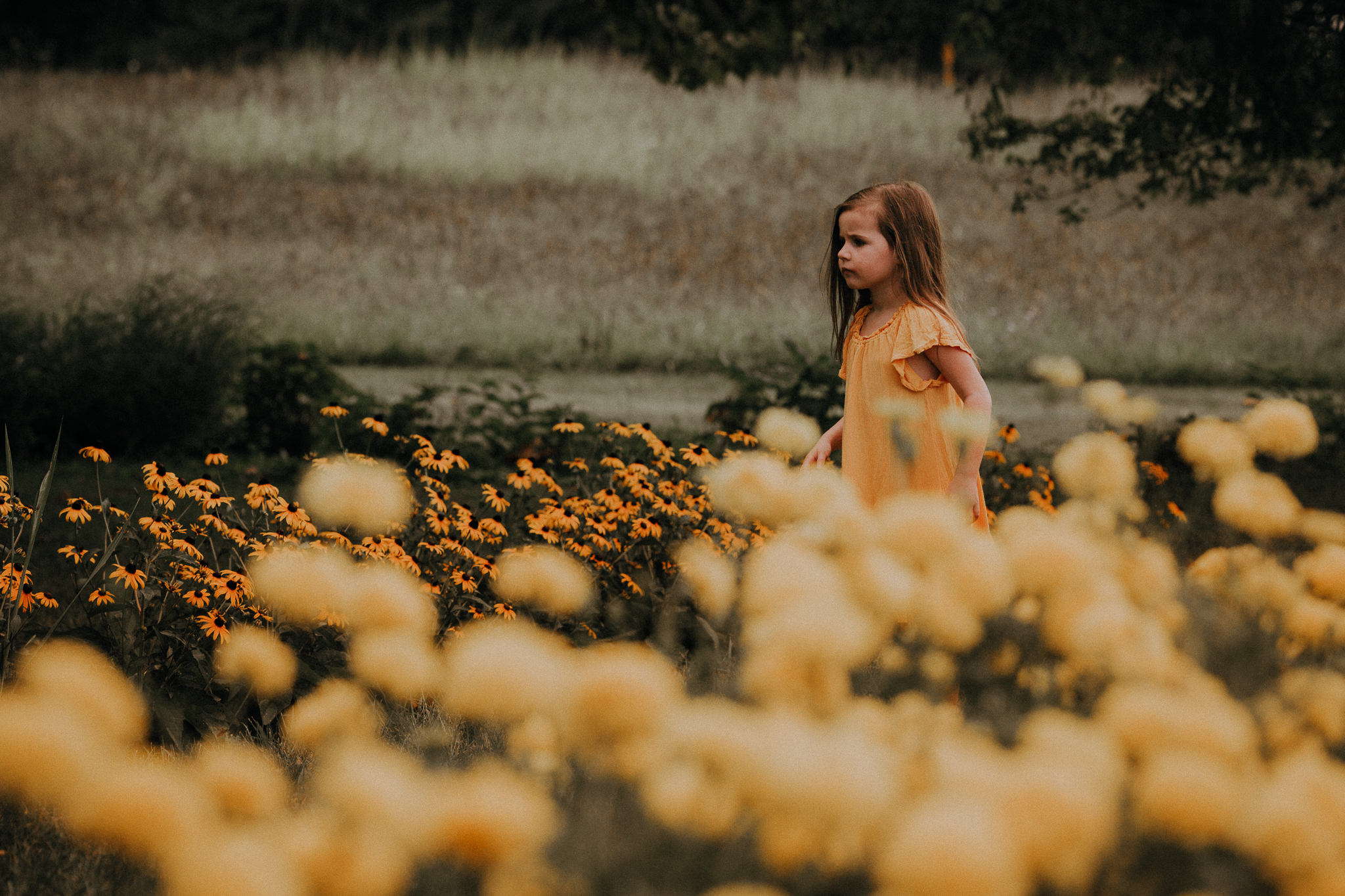 girl in yellow dress walking through field of yellow flowers summer Ashburn Loudoun Northern Virginia family lifestyle documentary childhood Marti Austin Photography