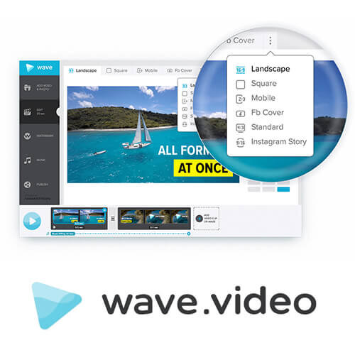 wave video logo.jpg