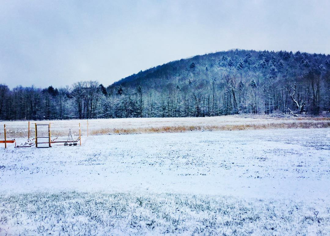 homestead, why we homestead