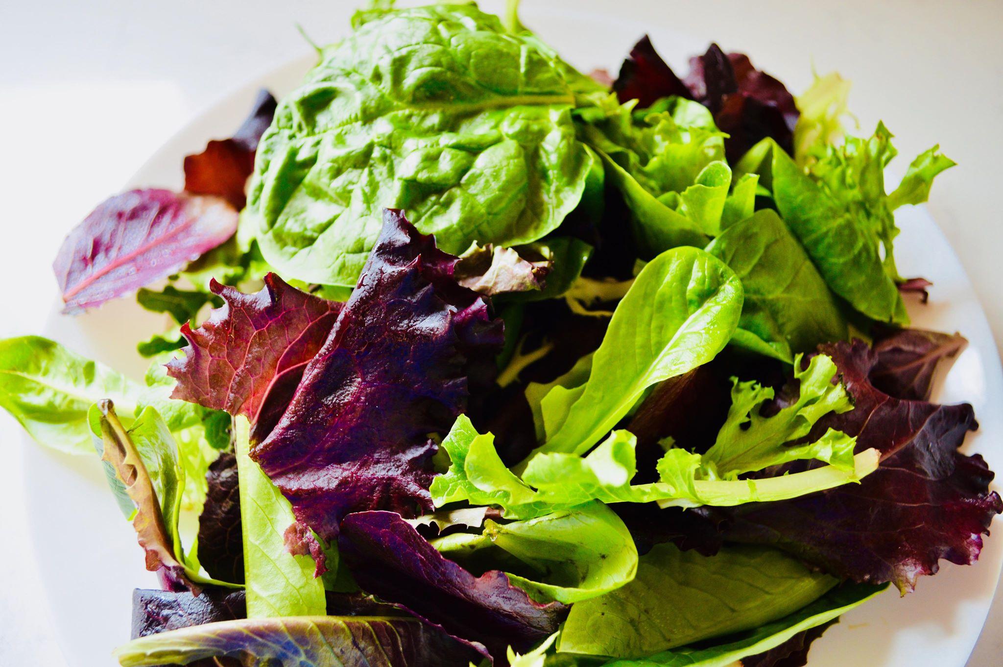 greens, spinach, microgreens, organic,backyard garden, microfarm, homestead, modern homestead, homesteading,