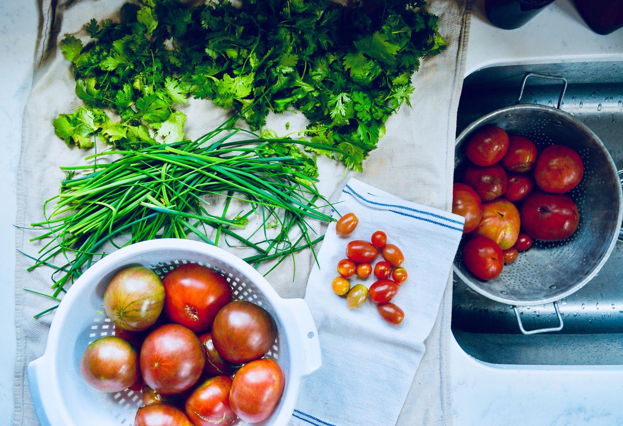 homemade salsa, garden salsa, fresh food, plant based diet, vegan life, modern homestead, homegrown, organic life, clean eating