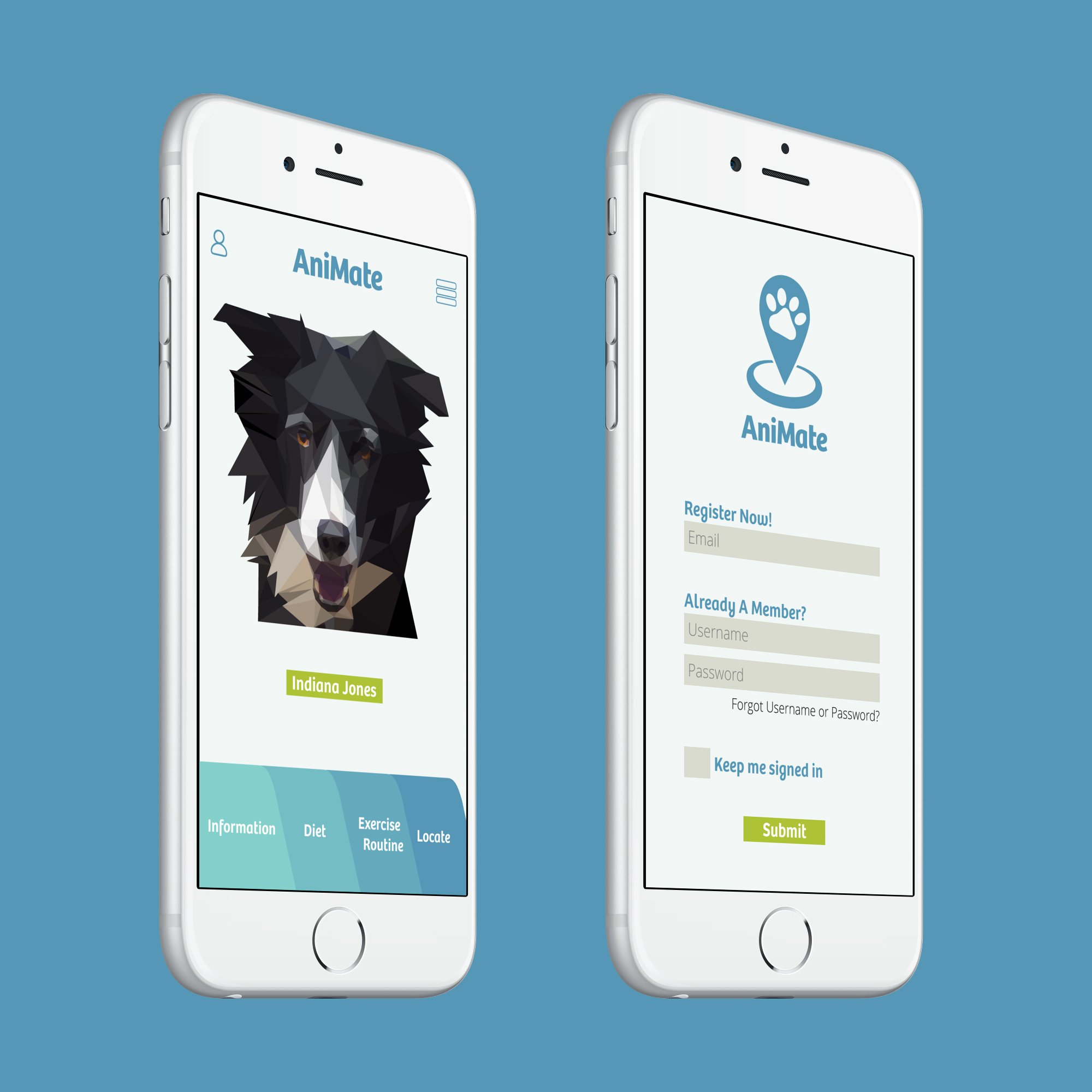 Final-Prototype_Pet-Profile_iphone6_silver_side1.jpg