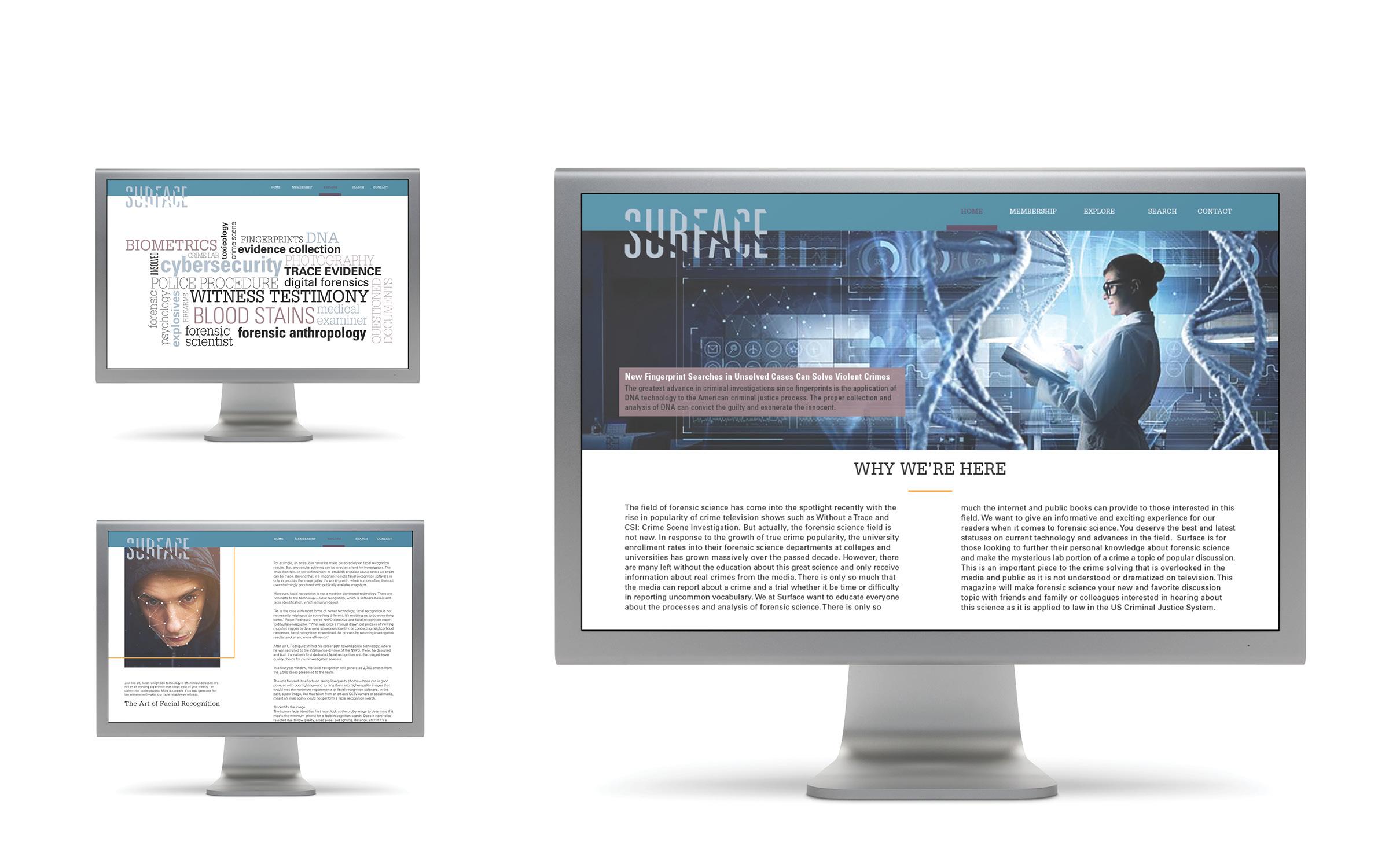 Surface Website.jpg