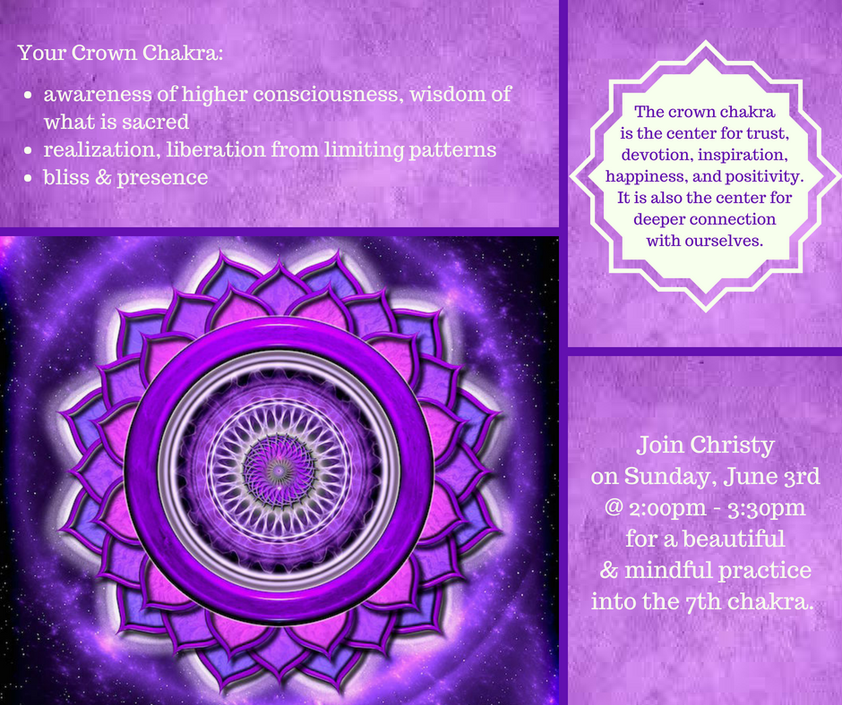 Chakra Program 6.3.18.png
