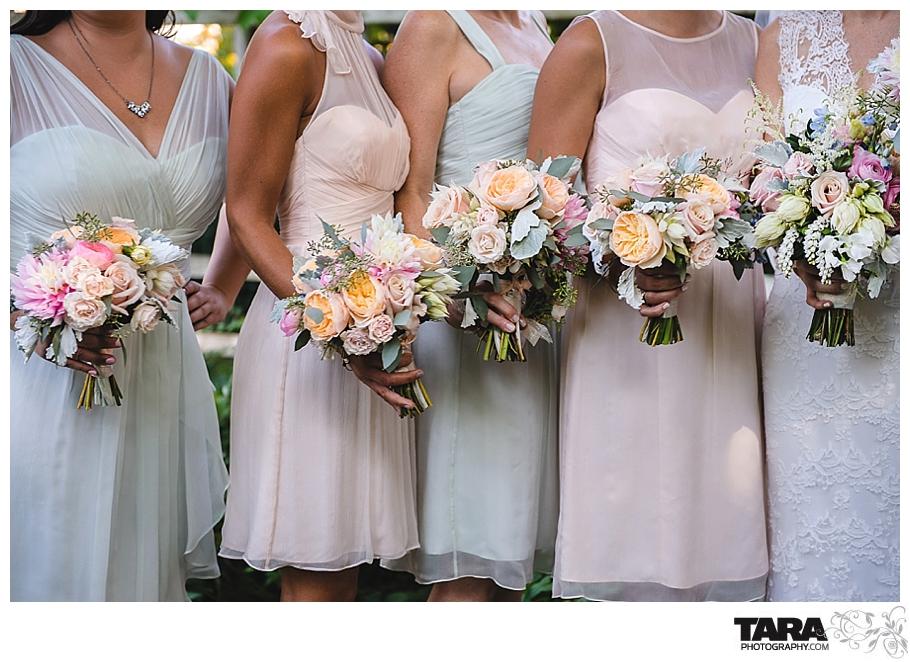 TARA Photography