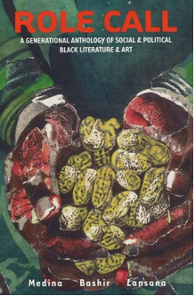 Role Call: A Generational Anthology of Black Literature and Art   Third World Press, 2002