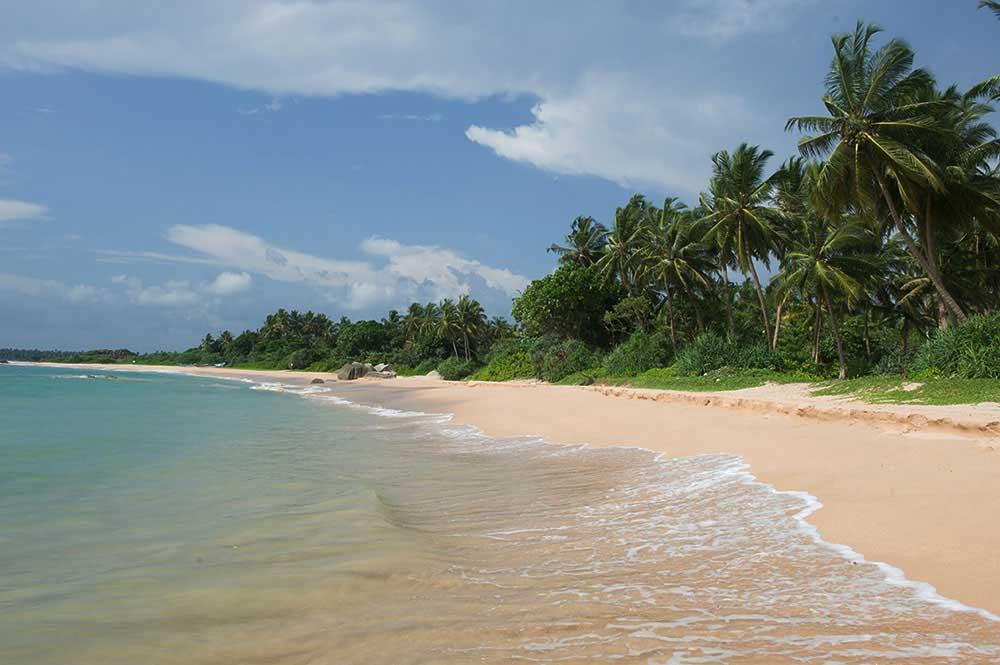 srilanka_3.jpg