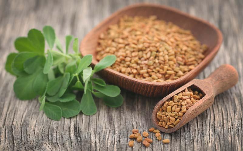 Bukkehornsfrø - Kendt som de fedtkogende frø, der kan sænke blodsukkeret, hjælpe med at opløse fedt i leveren, forbedre knoglers sundhed og øge stofskiftet.