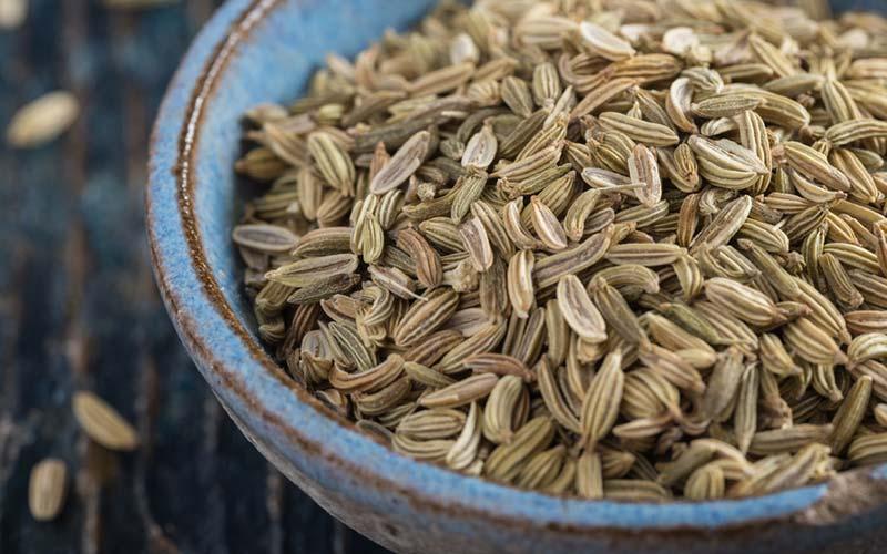 Fennikelfrø - Et køligt krydderi, der hjælper med at rense fordøjelseskanalerne. Det hjælper med forstoppelse og har også beroligende egenskaber.