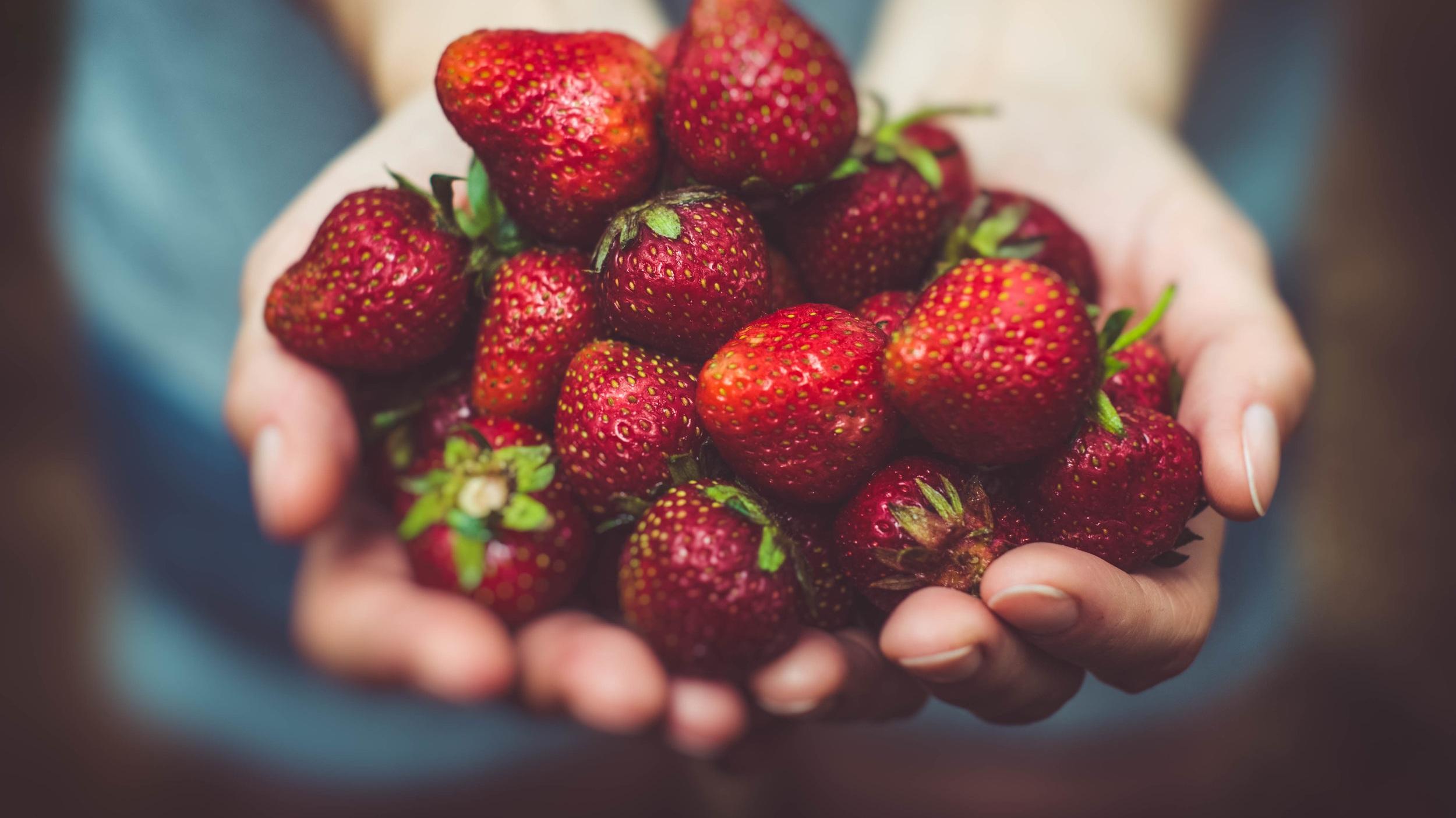 jordbær-bidrager-til-vitaminbehovet