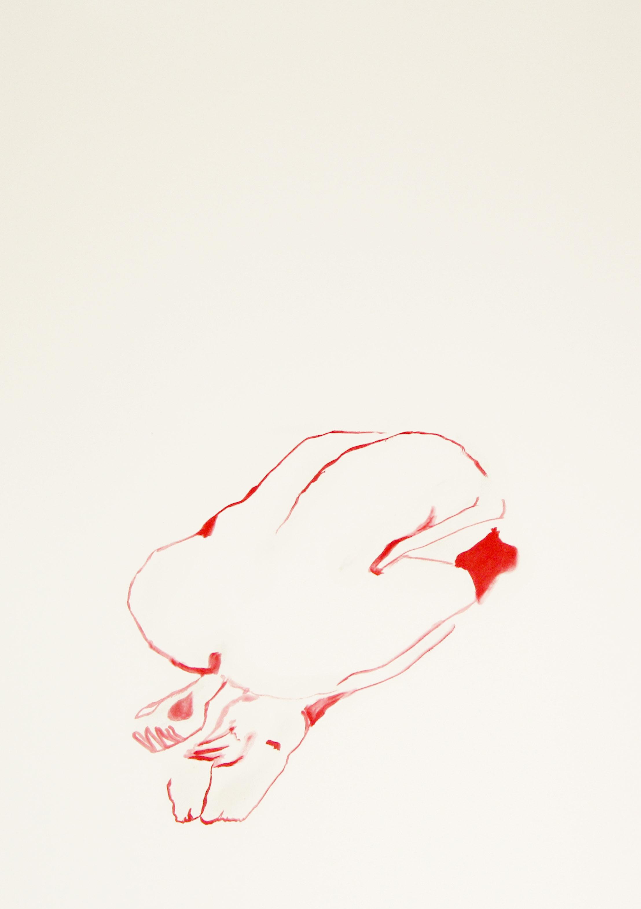 red last tes 1.jpg