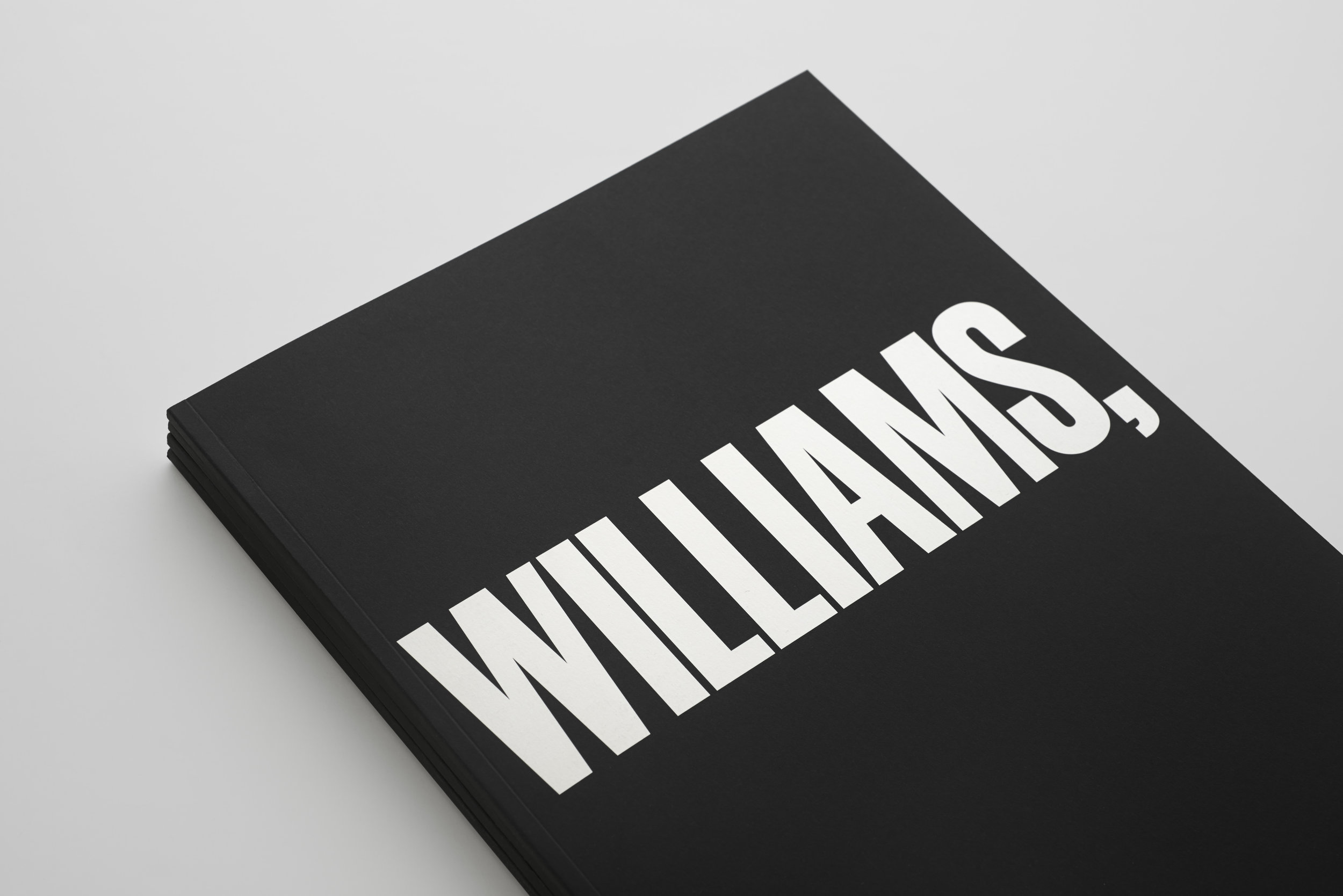 NY_MB_Williams College_Press Book_67.jpg