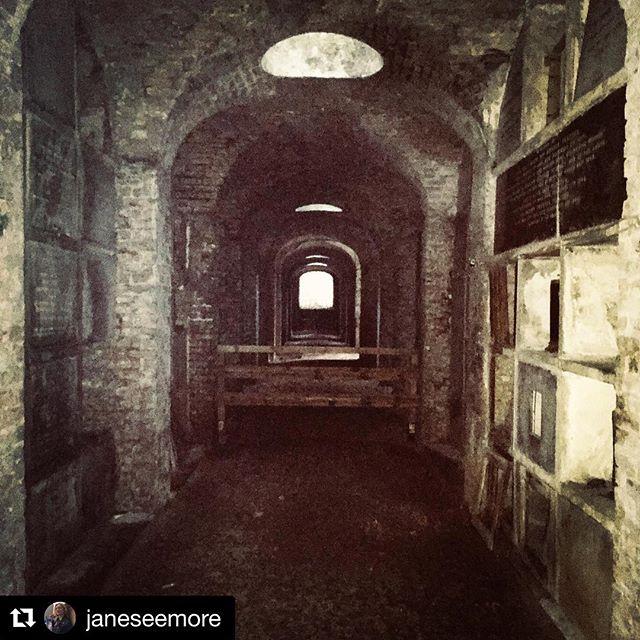 Archway after archway through the tunnel from @janeseemore. #doorwaysartshow #doorwaysoflondon #friendsdoorways #highgatecemetery #terracecatacombs