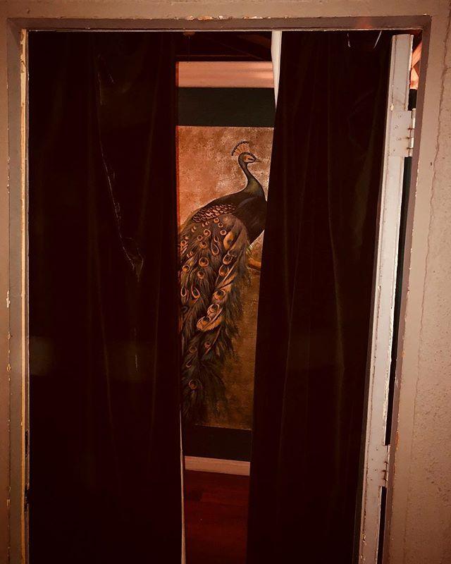 A peak behind the curtain at the peacock from @in8loveacupuncture. #doorwaysartshow #friendsdoorways #doorwaysoflosangeles