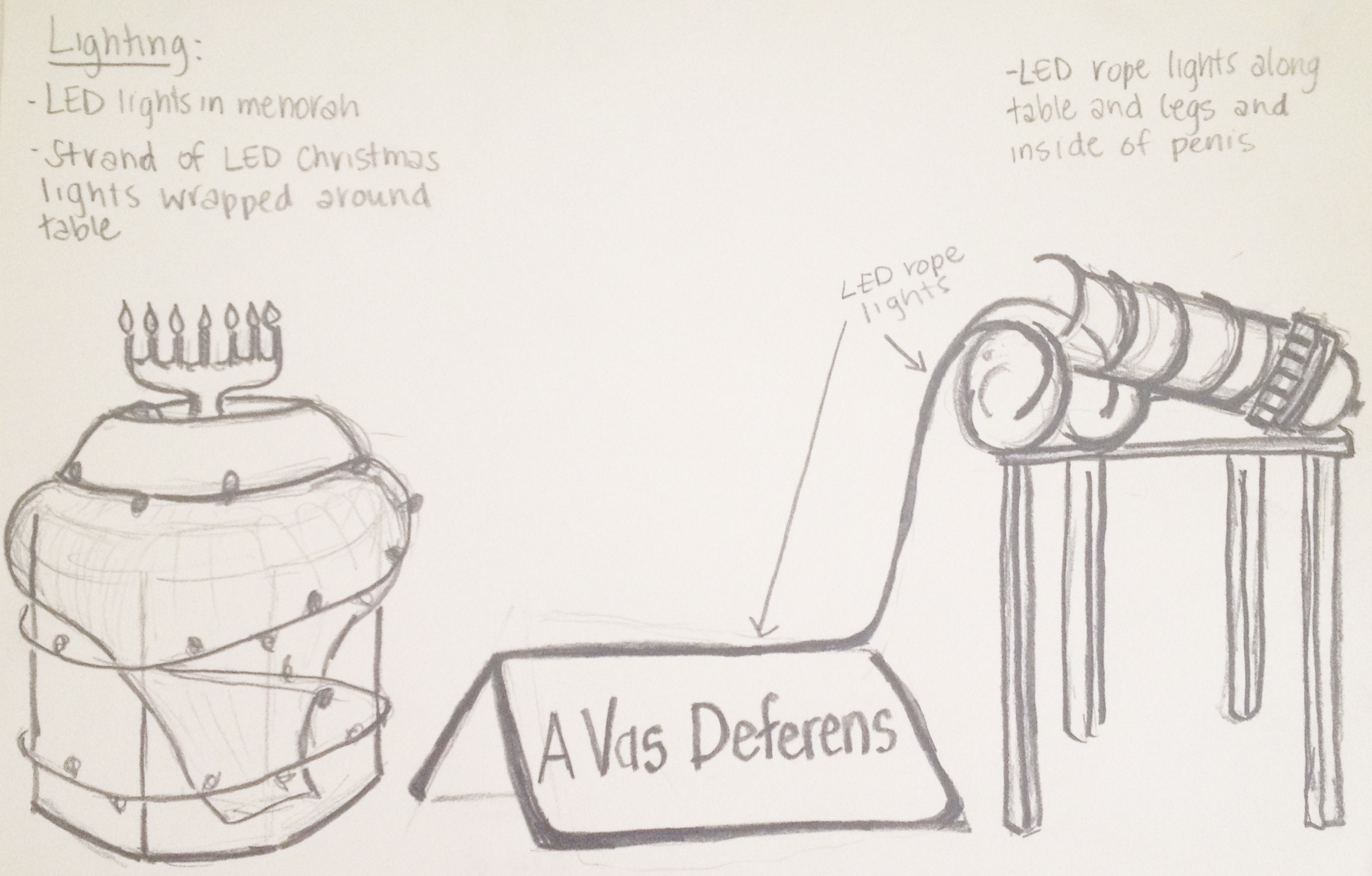 Vast Deferens Drawing.jpg