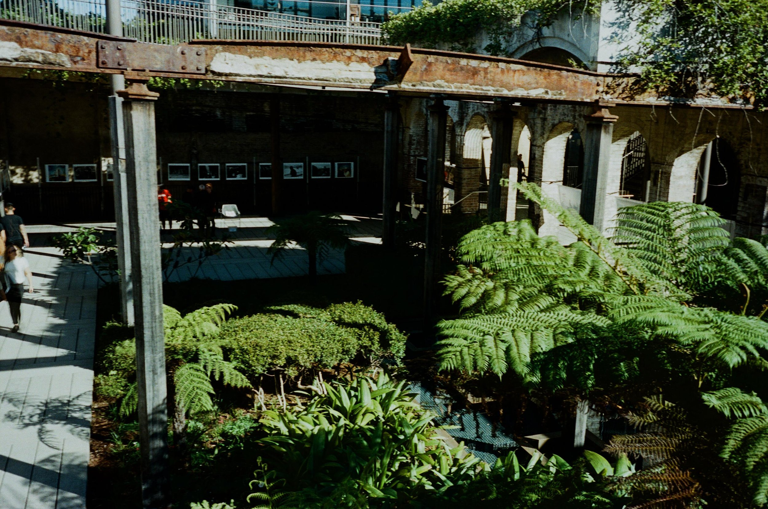 an outdoor art gallery in Paddington