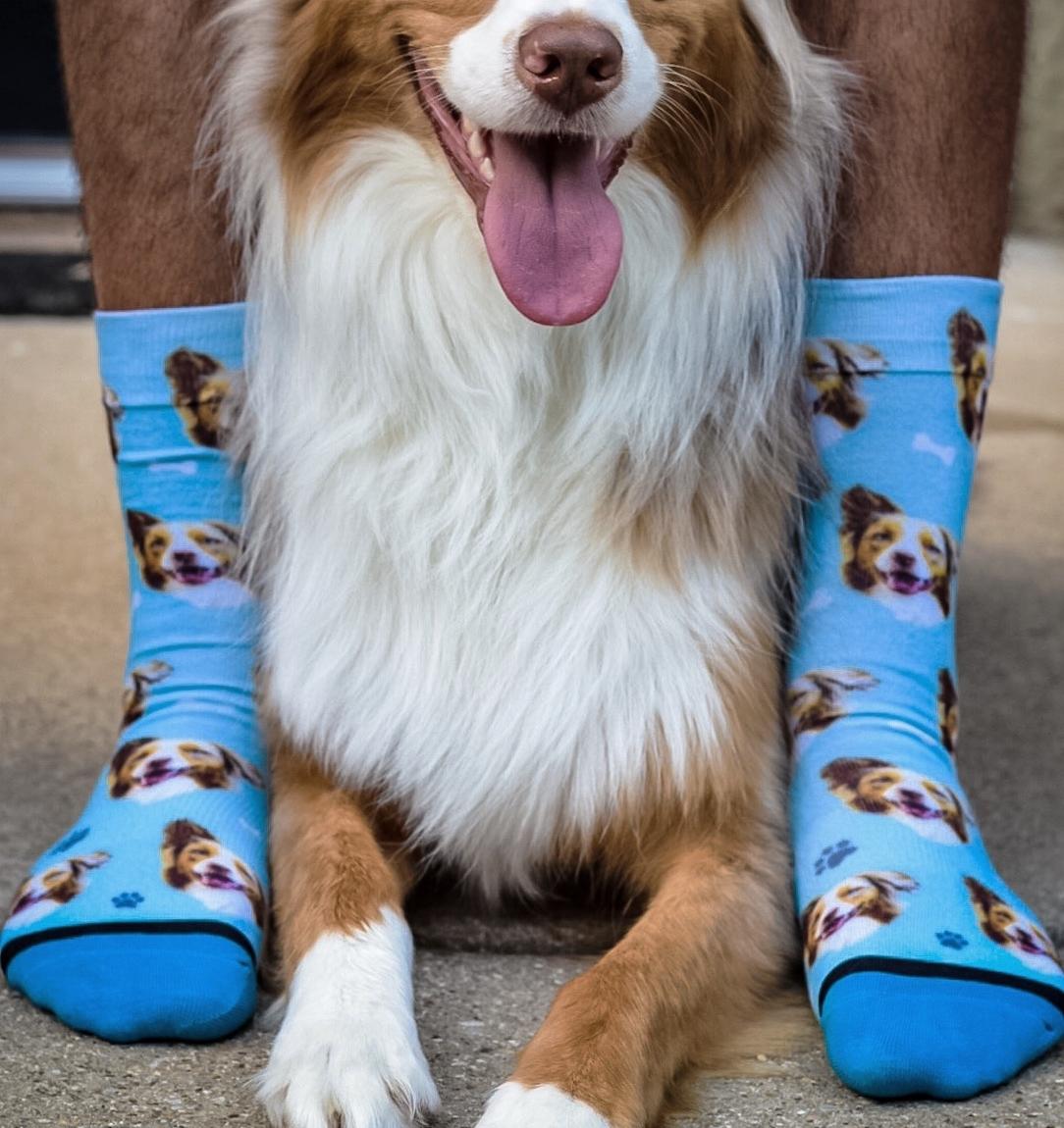 DivvyUp Socks  | Florida   Aiding the homeless in the U.S.