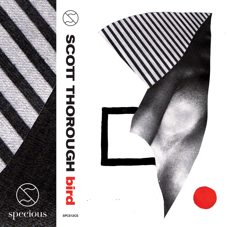 Scott-Thorough_Bird_Front-Cover_1500px.jpg