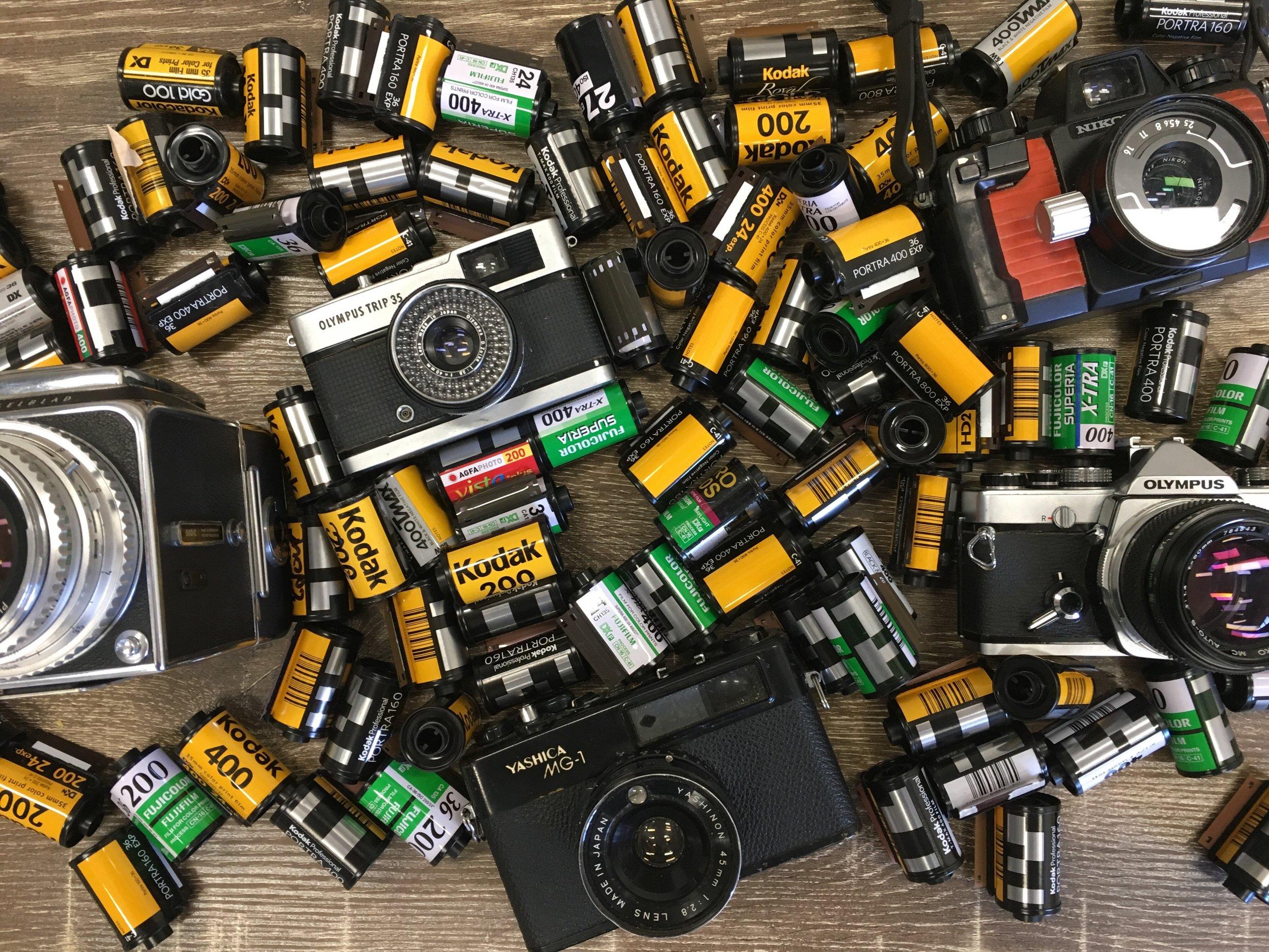 Film Photography - Bayou Film.jpg