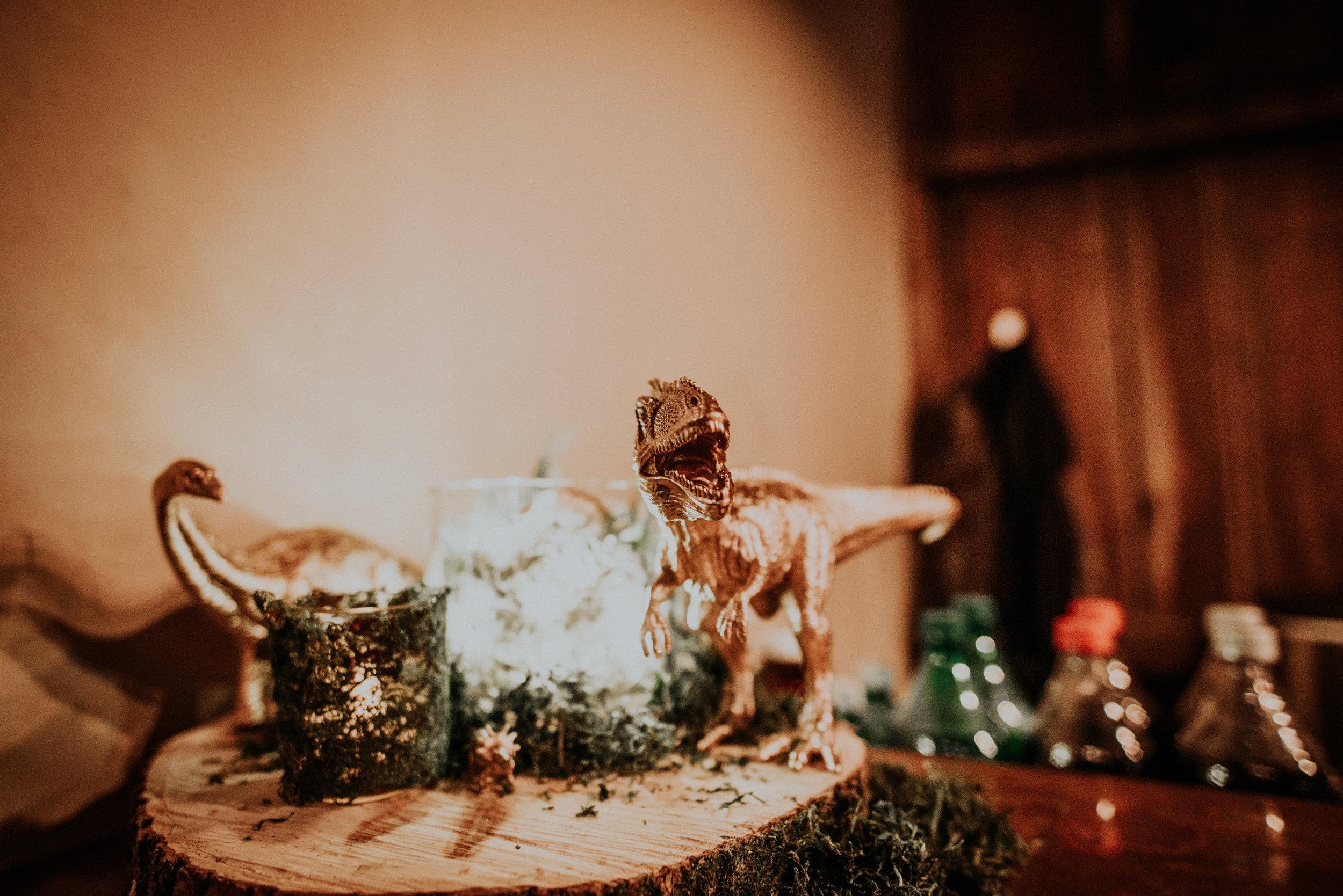 BridesbyYoung-RealWedding-PlusSizeBridal-BillyCourtney-JurassicParkTheme-19.jpg
