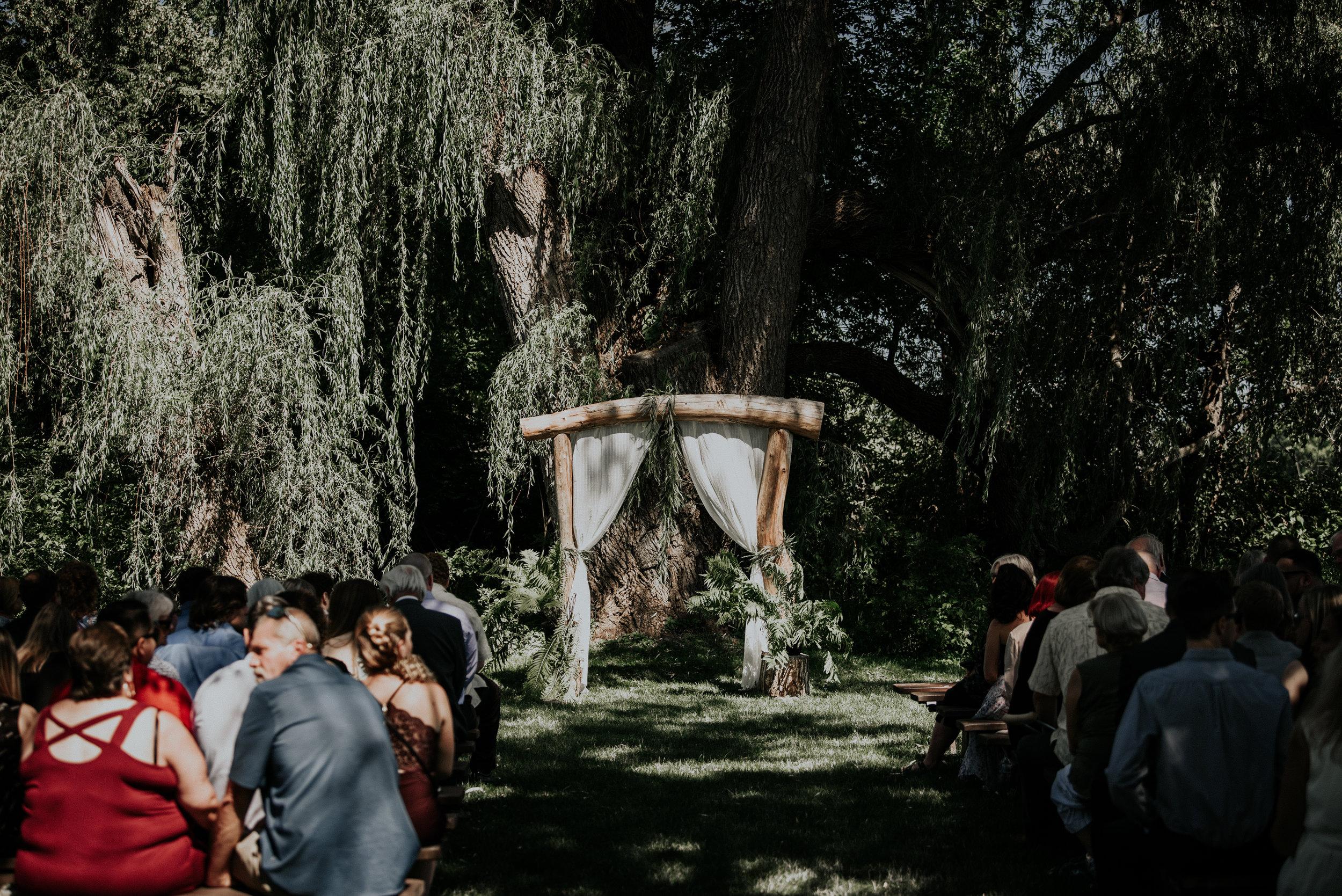 BridesbyYoung-RealWedding-PlusSizeBridal-BillyCourtney-JurassicParkTheme-21.jpg