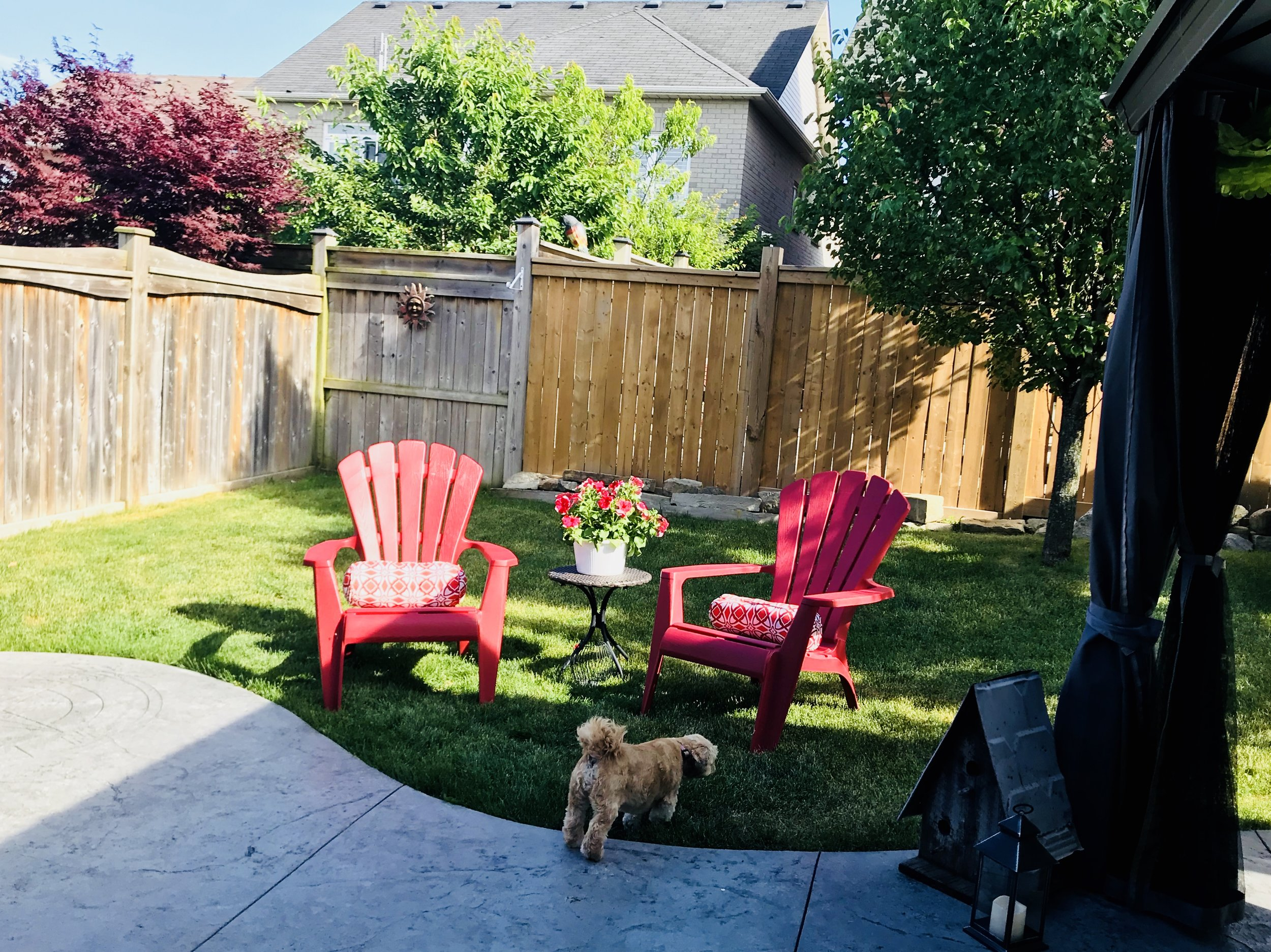 The lines you see in the patio are how the water drains off the patio onto the lawn.  We always worry these aren't quite right too!  Red muskoka chairs are from  Canadian Tire a nd cushions are  Presidents Choice !