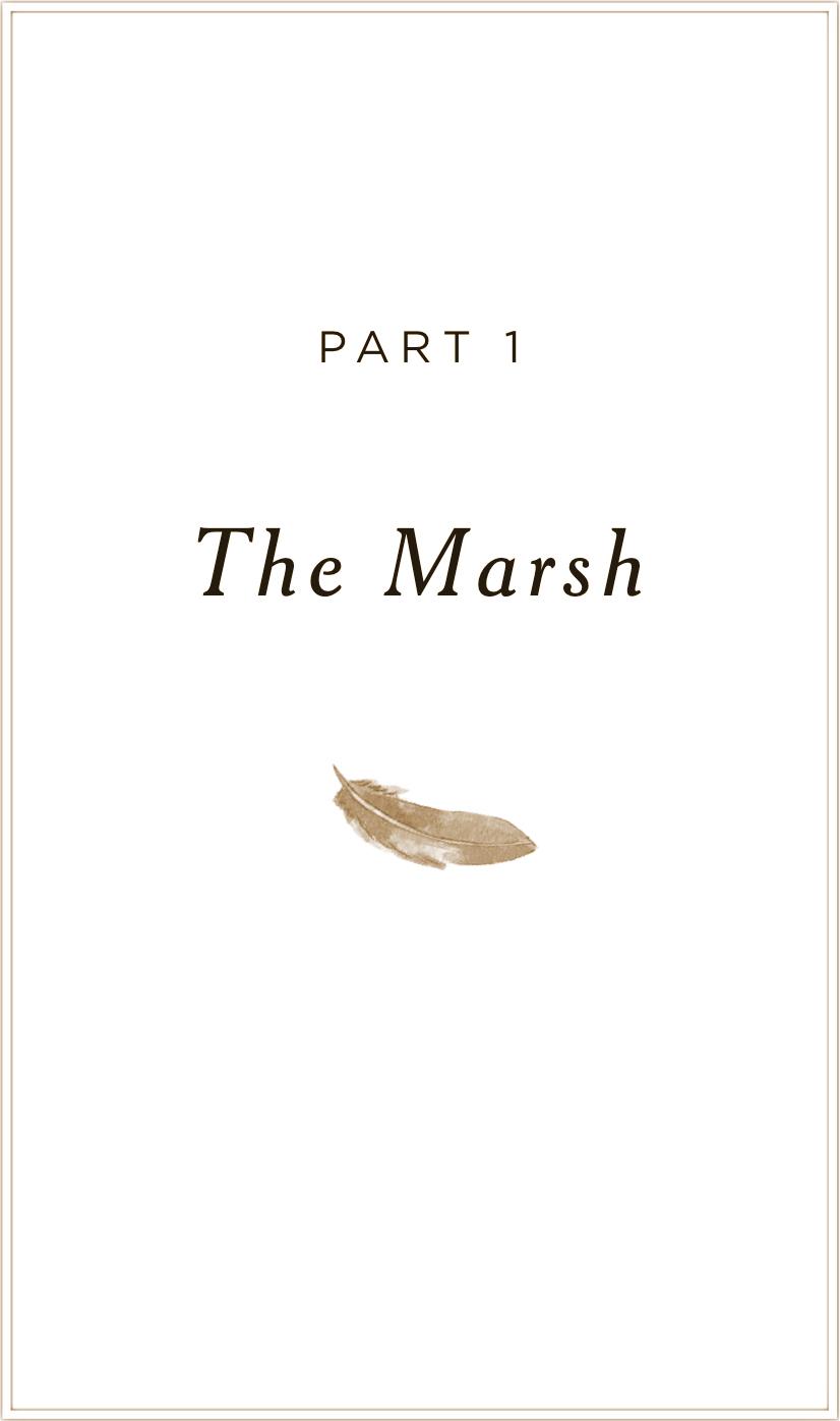 Crawdads-chaptertitle-marsh.jpg