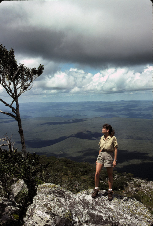 <p>Delia overlooks the Luangwa Valley in Zambia where she studied elephants for eleven years. Photo: Mark J. Owens.</p>