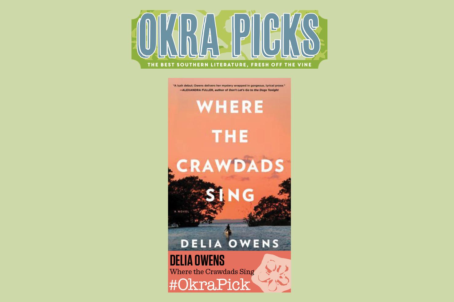 okra-pick-banner.jpg
