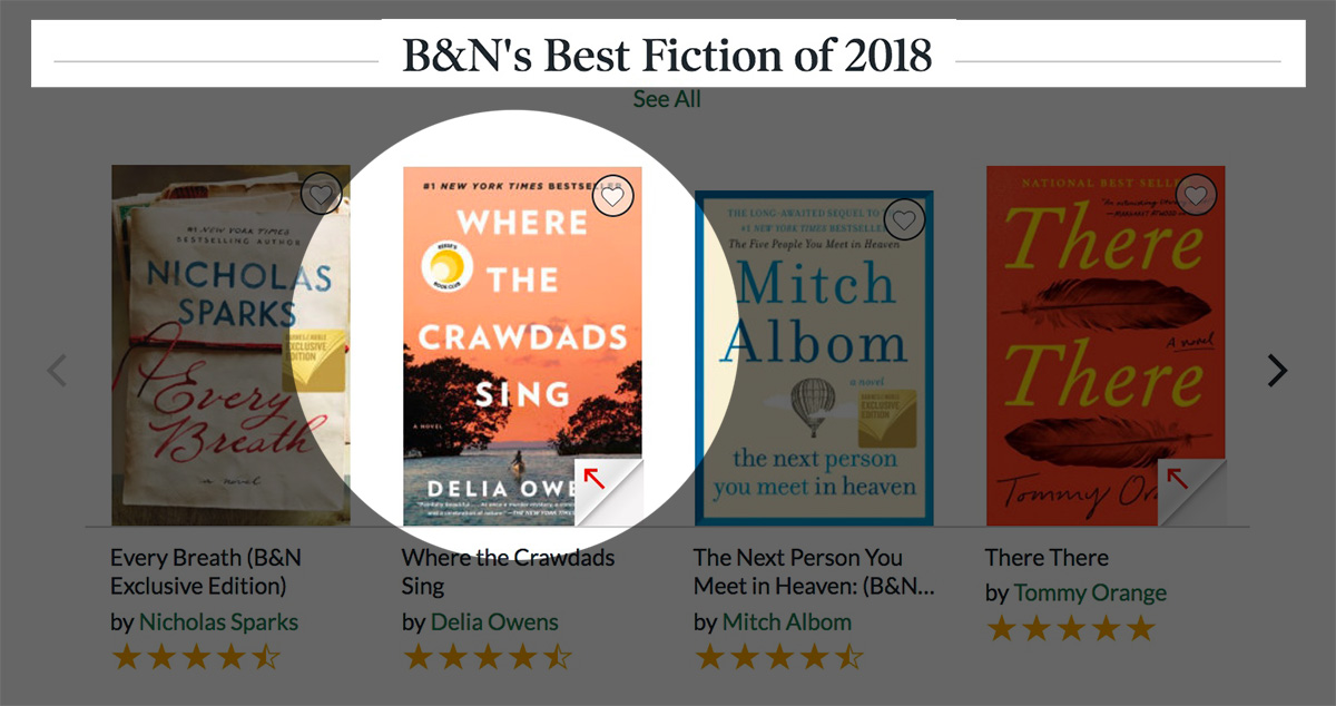 bn-crawdads-bestfiction-2018.jpg