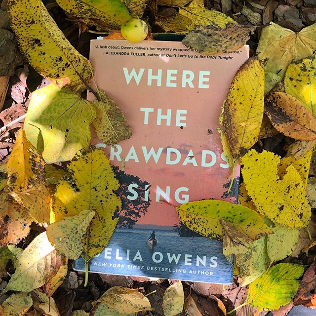 As autumn leaves begin to fly, we're celebrating 'Where the Crawdads Sing' being on the New York Times Bestseller list for 51 weeks and being #1 for a total of more than seven months. It has been so fun to share this extraordinary year with you!