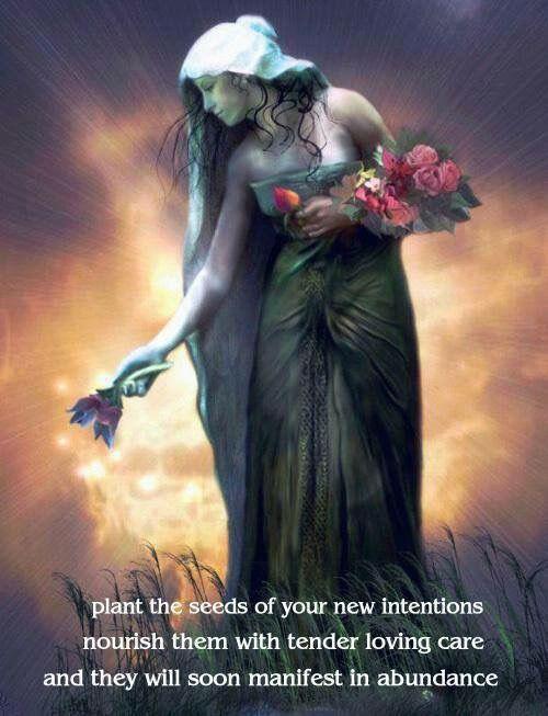 seeds of intention.jpg