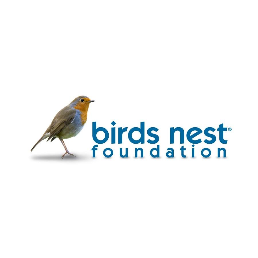 birds nest foundations - digital content editor