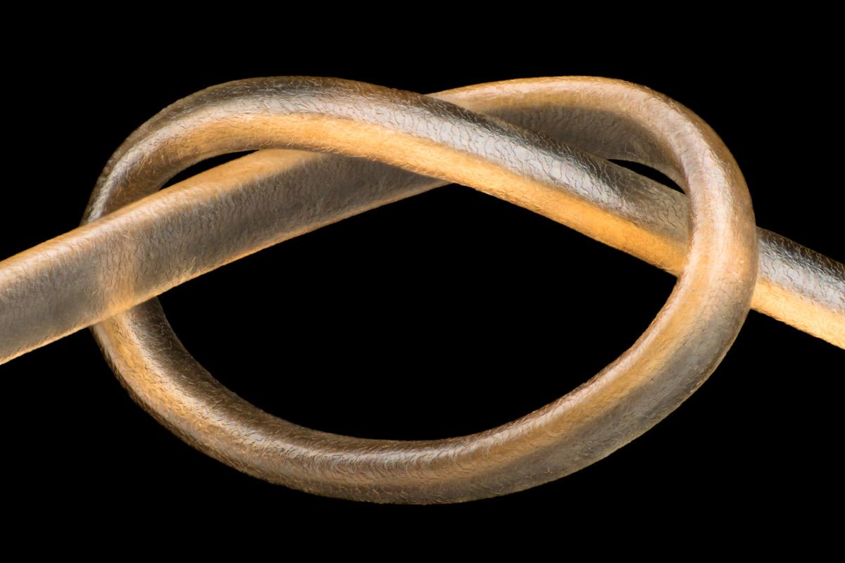 Leonardo-Capradossi-Blond-Hair-Knot-CUPOTY-1200px.jpg