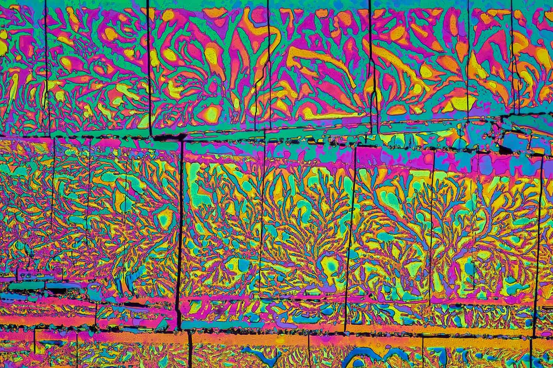 Peter Juzak  | Oxalic Acid: A Carpet Full of Floral Patterns